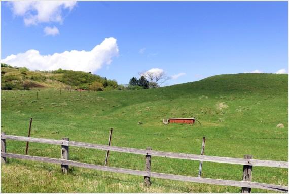 茶臼山牧場1の4