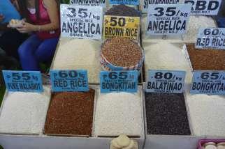 Sagadaより安い。オーガニック米も。手前のもちのようなのは麹。酒造りの元。