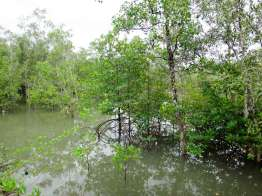 Mu Ko Ranong National Park