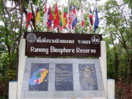 Ngao Mangrove Forest