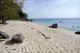 Mira Beach, Kecil