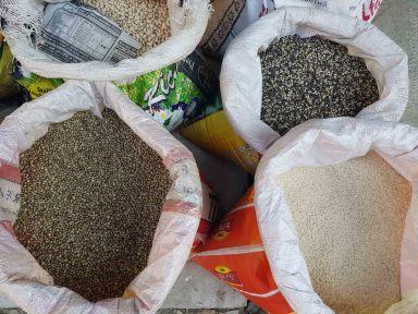 ローカル米は180Rs/kg, ヒンド米は70Rs
