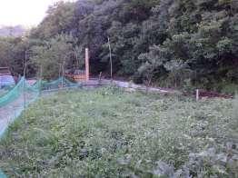 台風で倒壊したフェンス