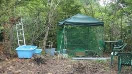 鶏小屋作った