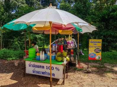 ココナッツジュースを買ったら砂糖シロップの味が丸出しだった。100%は嘘なのか。ココナッツは丸ごとを買うべし。