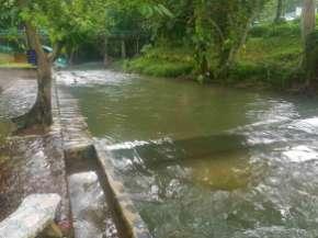 夜の雨で増水している。泥川にならない。