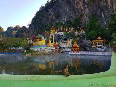 猿と源泉池