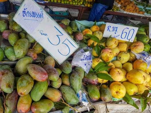 マンゴー各種