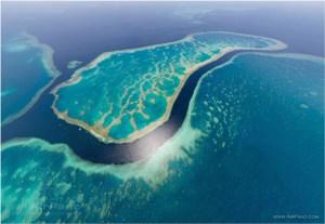 Büyük-Set-Resifi,-Avustralya2