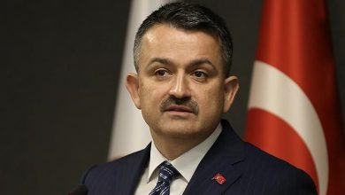 Photo of Bekir Pakdemirli