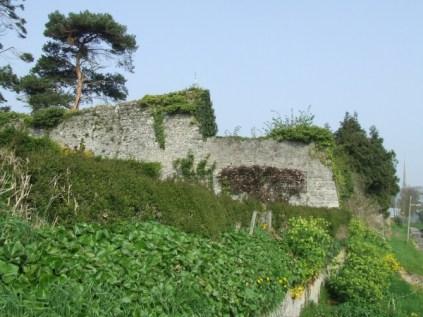 S-W corner of the Walls 2