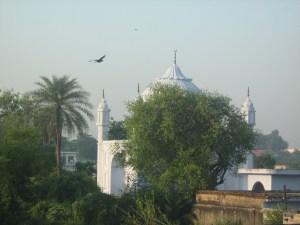 Khwaja Saifuddin Tomb 2