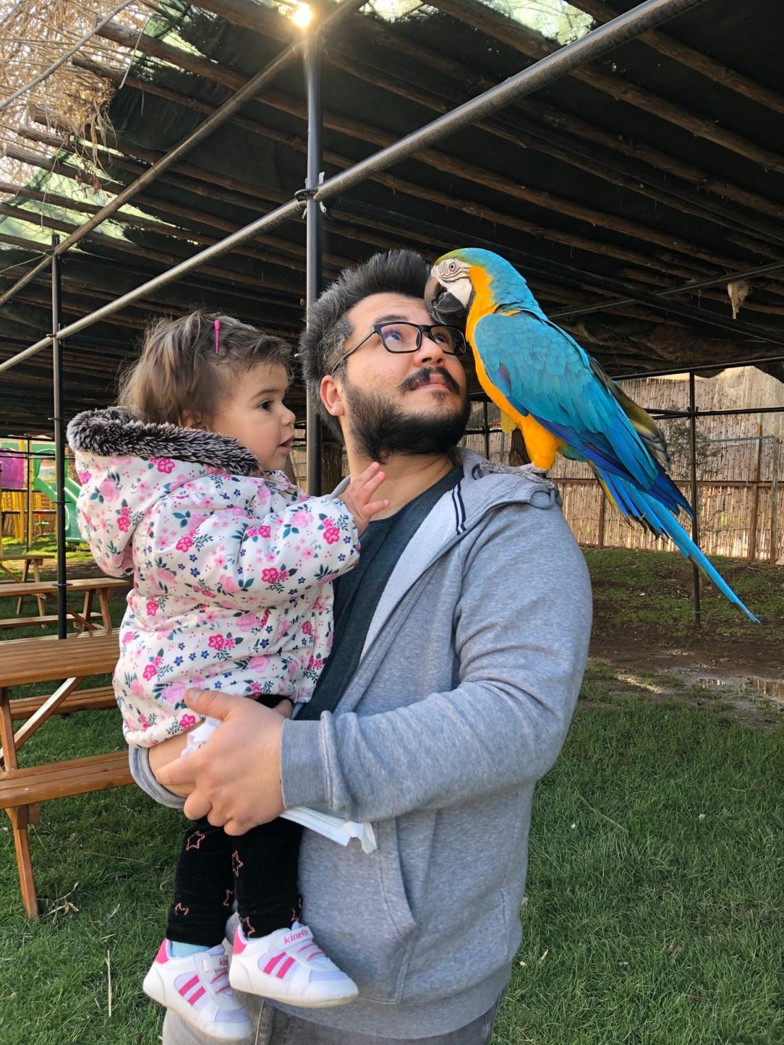 neselikoy-papagan