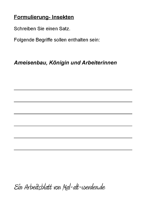 arbeitsblatt-formulierung-insekten