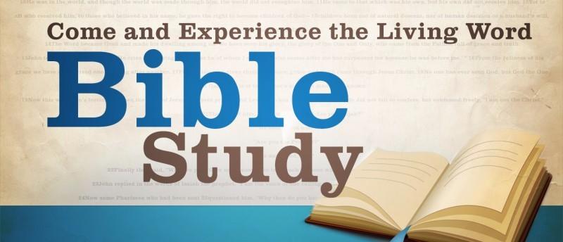 STM-bible-study-800×344