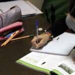 Clases de español, inglés y refuerzo educativo en Fuengirola