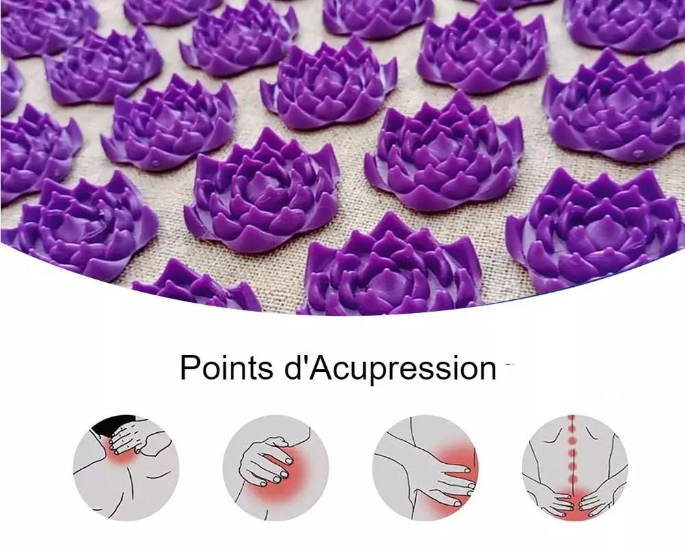 tapislotus tapis d acupression champ de fleurs de lotus