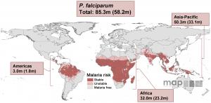 Malaria Pregnancy Risk