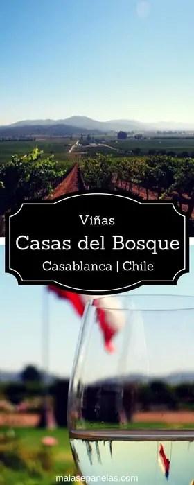 Vinícola Casas del Bosque - Casablanca - Chile