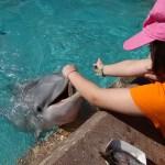 Nossa visita ao SeaWorld em Orlando