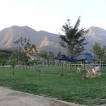 5 passeios para crianças em Santiago