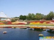epcot flower and garden festival-5