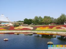epcot flower and garden festival-5