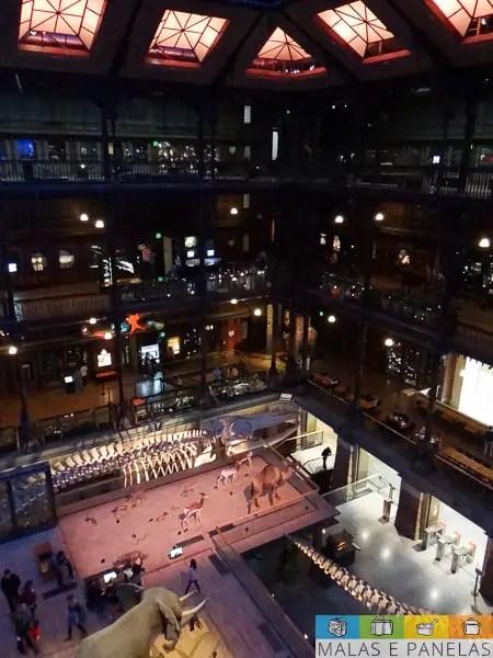 Grande Galerie de Evolution Paris