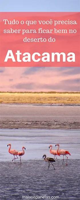 Dicas para passar bem no Atacama