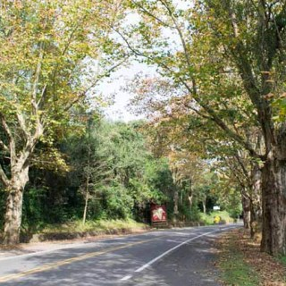 Rotas alternativas para chegar em Gramado (estrada em obras)