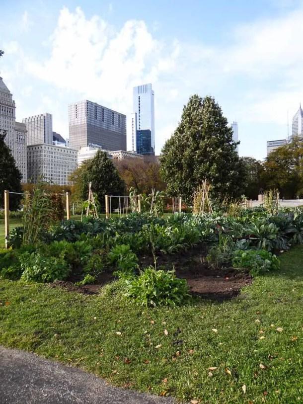Chicago Grant Park (4)