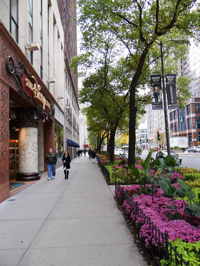 Chicago Magnificent Mile (3)
