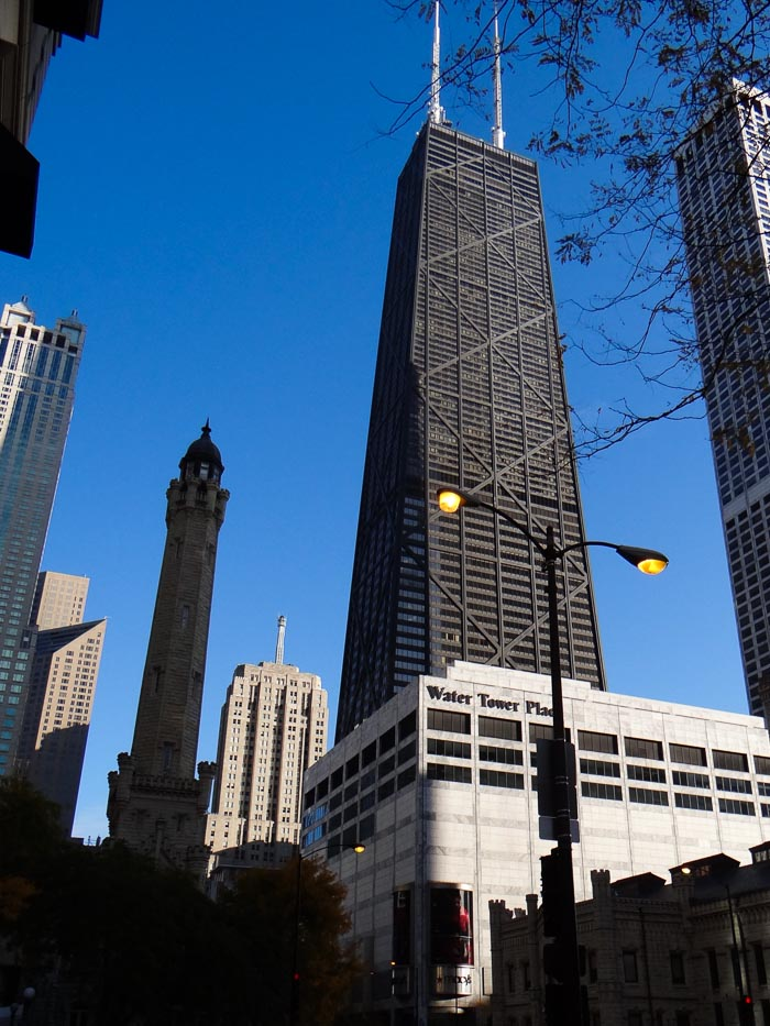 Chicago Magnificent Mile (6)