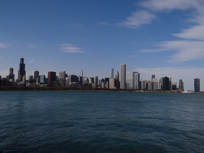 Chicago Skyline (5)