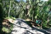 Parque Estadual do Caracol - Canela