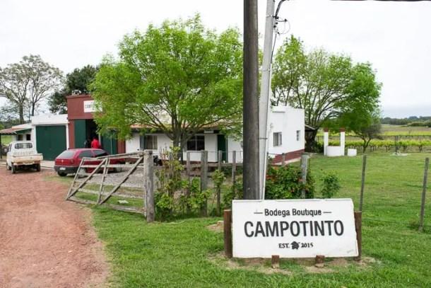 Bodega Campotinto