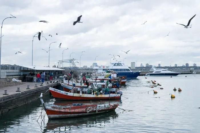 Punta del Este fora de temporada | Malas e Panelas