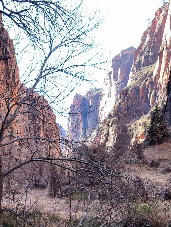Riverside Walk | Zion National Park