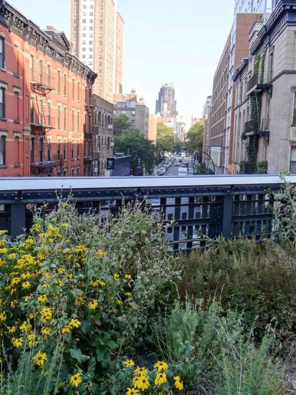 O que fazer em Nova York com Crianças - High Line
