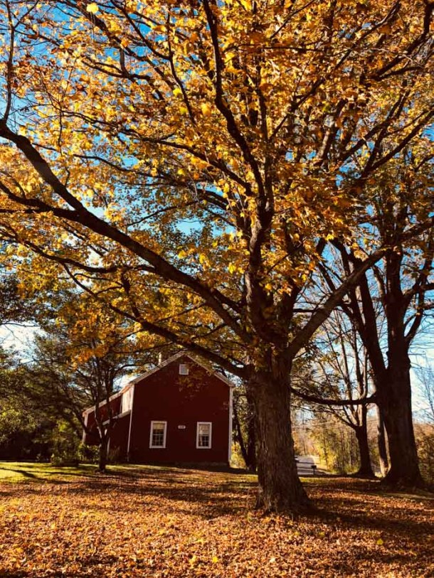 20 Great Places to Take Pictures in New England - North Bennington, Vermont | Travel Cook Tell
