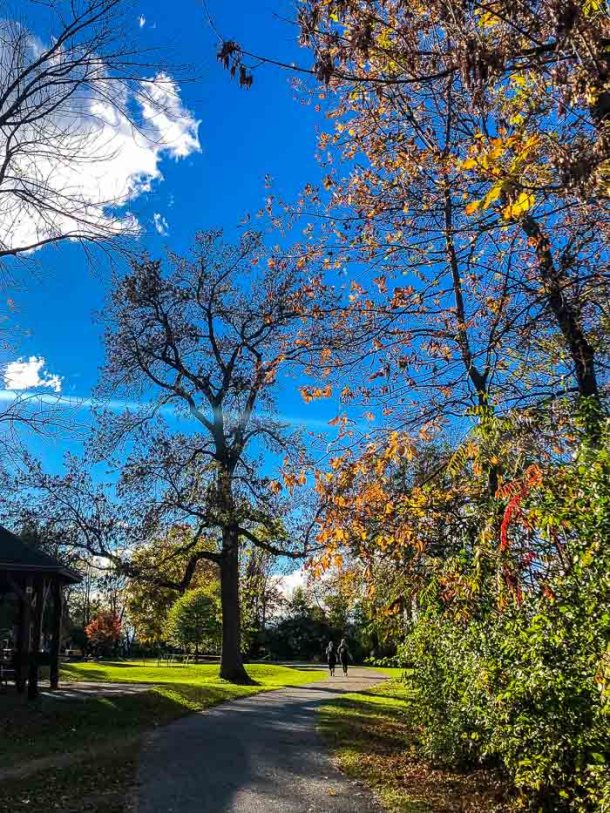 Oakledge Park Burlington