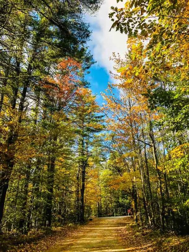 Estradinha de terra em Maine