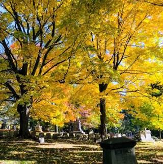 Mount Alburn Cemetery