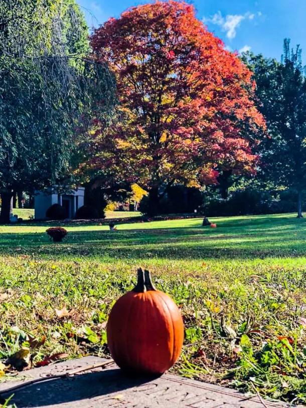 Maunt Alburn Cemetery - Boston