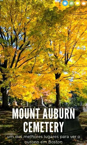 Mount Auburn Cemetery: um dos melhores lugares para ver o outono em Boston | Malas e Panelas