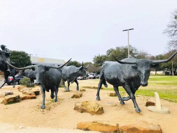 Estátuas bois Waco