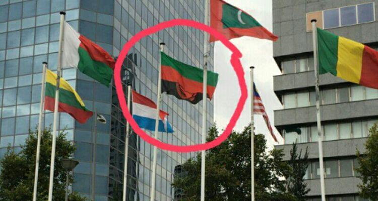 Malawi Flag UN