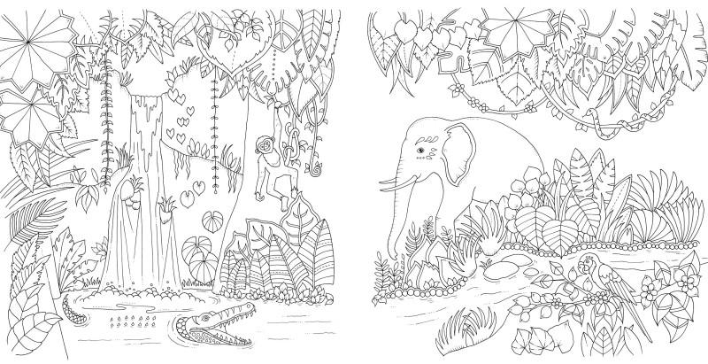 30 Dschungel Bilder Zum Ausdrucken Besten Bilder Von Ausmalbilder