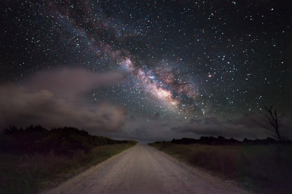 Milky Little Burst Of Midwinter Glory Malcolm Guite