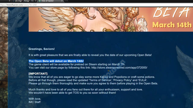 Tree of Savior Open Beta Leak